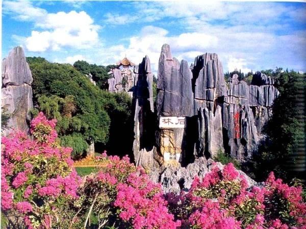 Thăm khu rừng đá khổng lồ được mệnh danh kỳ quan 11