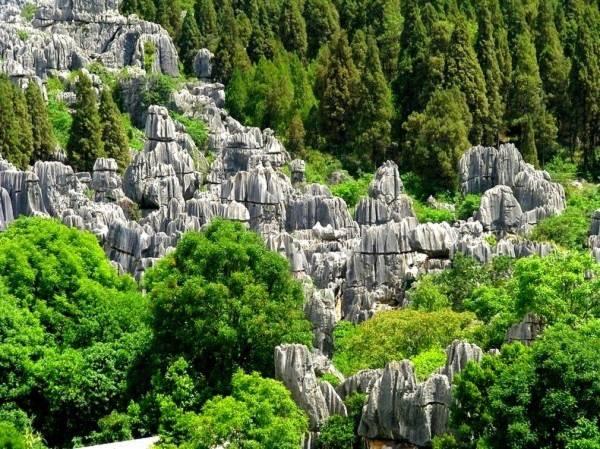 Thăm khu rừng đá khổng lồ được mệnh danh kỳ quan 2
