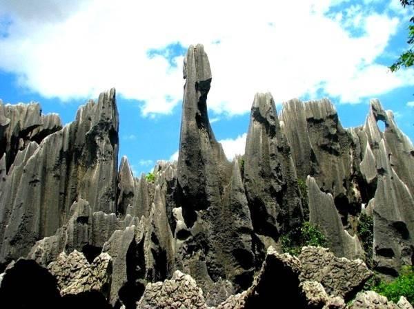 Thăm khu rừng đá khổng lồ được mệnh danh kỳ quan 4
