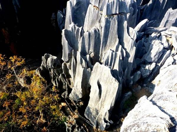 Thăm khu rừng đá khổng lồ được mệnh danh kỳ quan 5