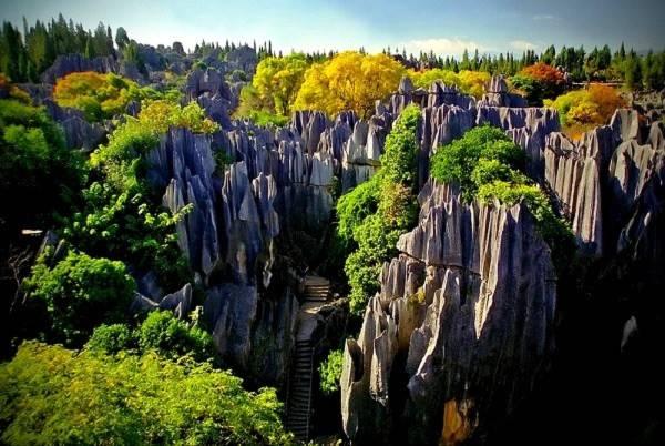 Thăm khu rừng đá khổng lồ được mệnh danh kỳ quan 8