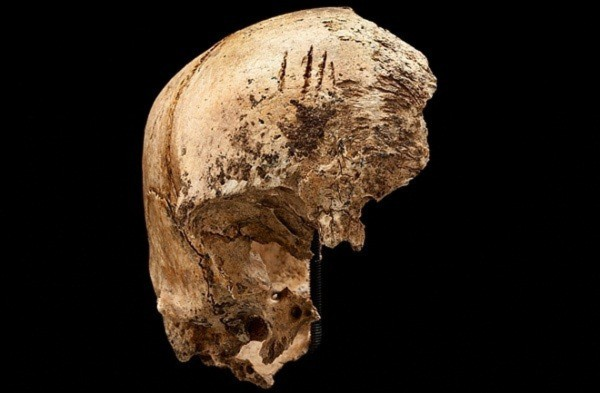 Vén màn bí ẩn thảm kịch ăn thịt người cách đây 400 năm 8