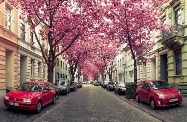 Những con đường tình yêu đẹp ngỡ ngàng trên thế giới 4