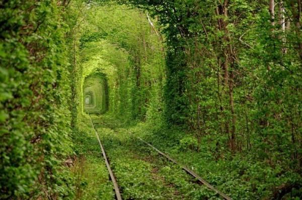 Những con đường tình yêu đẹp ngỡ ngàng trên thế giới 8