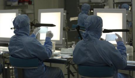 Cúm gia cầm H7N9 có thể gây đại dịch trên thế giới sau vài ca đột biến - Tin180.com (Ảnh 1)