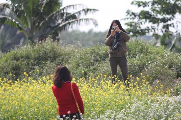 Dịp cuối tuần, nhiều bạn trẻ rủ nhau đến các khu vườn cải này để vui chơi, chụp ảnh.