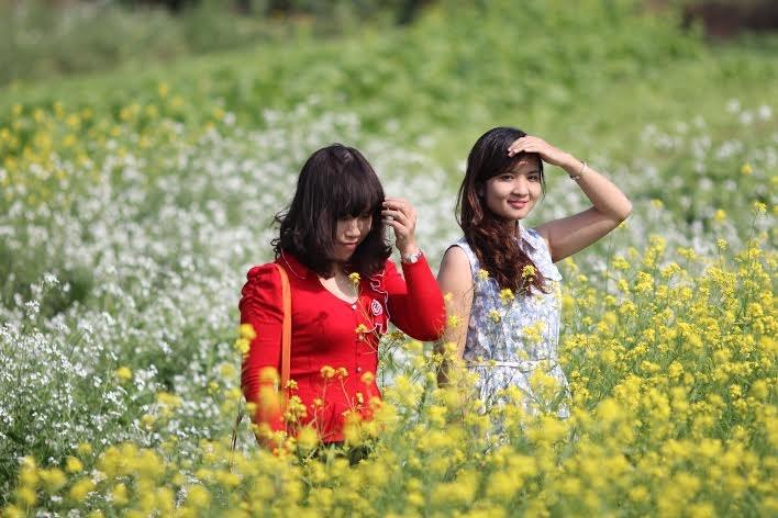 Vườn hoa cải ở làng Lã Côi, thị trấn Yên Viên đặc biệt được yêu thích bởi có hai loại hoa cải trắng và vàng mọc xen kẽ rất đẹp mắt.