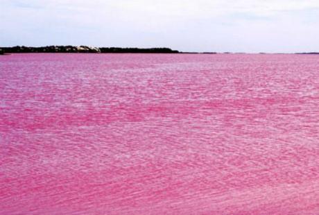 Những hồ nước màu hồng đẹp nhất thế giới