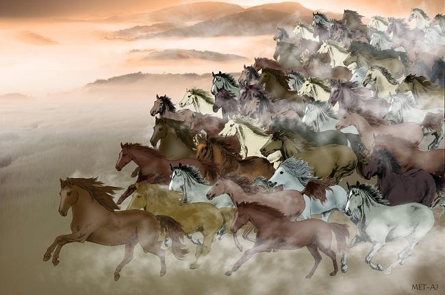 Nghìn ngựa sải bước