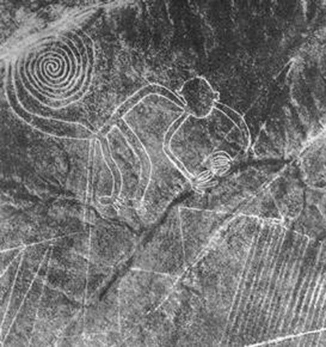"""Mô hình """"con khỉ"""" Peru Nazca , theo suy đoán mô hình này được khắc vào khoảng năm 300 – 800 trước công nguyên. (Wikipedia)"""