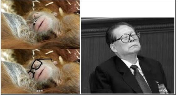 """Khỉ """"đeo"""" kính trông rất giống Giang Trạch Dân. (Hình ảnh Network)"""