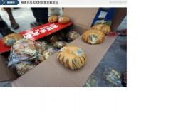 Người dân ở một làng thuộc thành phố Weichang của tỉnh Hải Nam, phía Nam Trung Quốc đã nhận được một thùng toàn bánh mì mốc trong chuyến hàng cứu trợ thiên tai vào ngày 20/7/2014, sau khi cơn bão Thần Sấm đổ bộ vào Trung Quốc ngày 18/7/2014. Truyền thông của nhà nước Trung Quốc báo cáo việc các nạn nhân của cơn bão này nhận được bánh mì mốc và chăn bông mùa đông từ các cơ quan chính quyền địa phương và từ Hội Chữ thập Đỏ. (Hình ảnh từ Caixin.com)