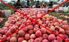 Gần 300 tấn rau quả độc Trung Quốc được nhập về Việt Nam và chỉ được phát hiện sau đó ... 1 năm