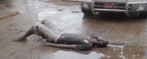 Ebola, đại dịch, dịch bệnh, WHO