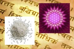 """Ảnh một cuốn Sanskrit (Maxim Krasnov/Hemera/Thinkstock, hiệu ứng thêm vào bởi Epoch Times); Ảnh trừu tượng về """"bông hoa của sự sống"""" (Tschitscherin/iStock/Thinkstock)"""