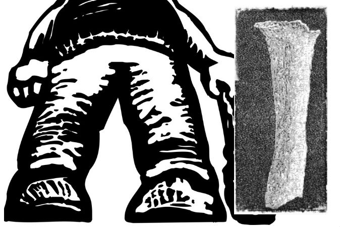 Trái: Một hình ảnh minh họa về người khổng lồ (Shutterstock*) Phải: Một mẩu xương có hình dáng xương cánh tay người, nhưng dài hơn xương thông thường rất nhiều, được Georges Vacher de Lapouge tìm thấy tại Pháp.