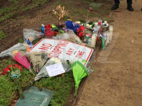 Đồng nghiệp và fan tưởng nhớ Paul Walker 1 năm sau ngày mất 9