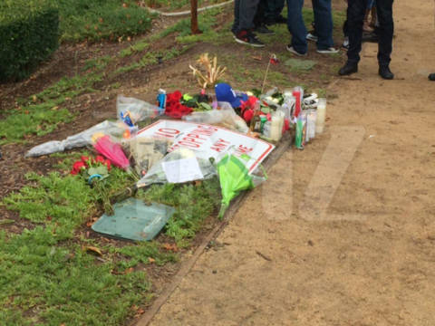 Đồng nghiệp và fan tưởng nhớ Paul Walker 1 năm sau ngày mất 10