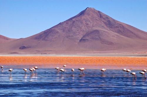 Ấn tượng hồ nước đỏ có một không hai thế giới - 6