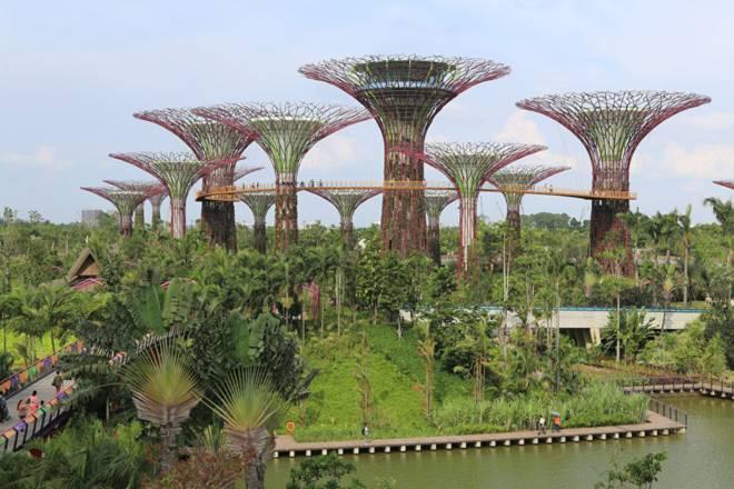 Chiến dịch biến Singapore thành công viên khổng lồ