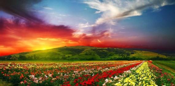 """Mê đắm 10 """"thiên đường sắc màu"""" rực rỡ nhất thế giới - 8"""