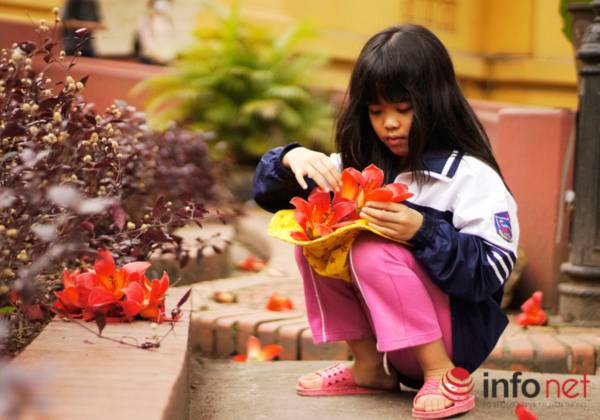 Hà Nội tháng Ba, miên man mùa hoa gạo - 7
