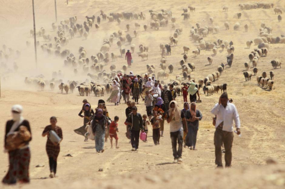 Cảnh người dân Syra cùng gia súc tháo chạy khỏi ISIS.