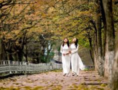 """""""Áo trắng chao nghiêng vờn theo gió"""" gắn liền với vẻ đẹp thiếu nữ Hà thành. Ảnh phunutoday"""