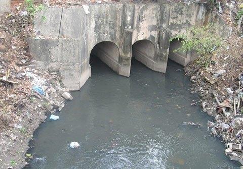 Nước sông Tô Lịch đen ngòm, đặc quánh. Ảnh VEF