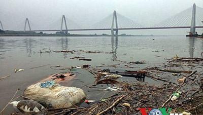 Sông Hồng-Sông Hồng, đoạn chảy qua nội thành Hà Nội...Rác thải, xác động vật chết bị vứt đầy trên mặt sông. Ảnh chụp tại chân cầu Nhật Tân (VOV).