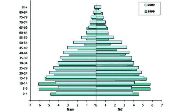 Biểu đồ dân số