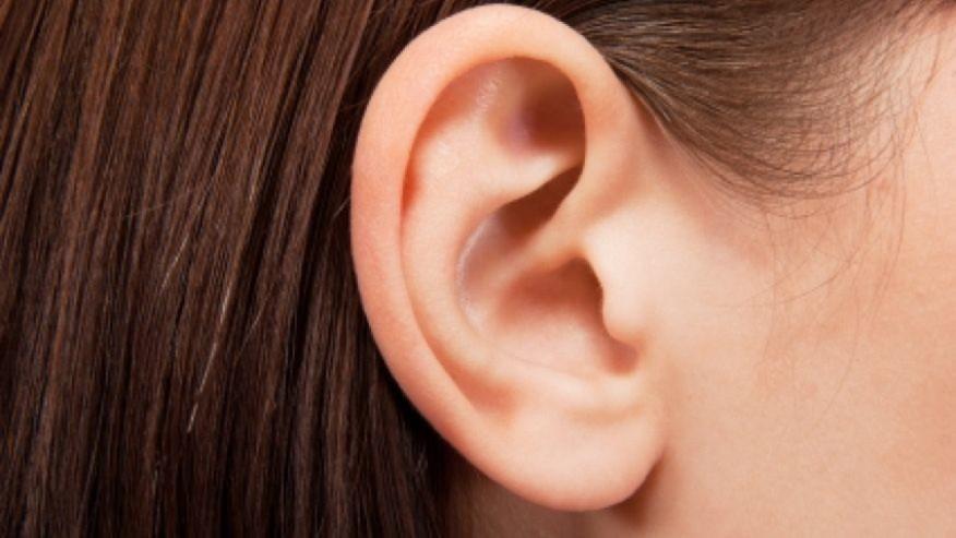Hình ảnh Nhện làm tổ trong tai một cô gái trẻ số 1