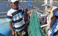 Ngư dân Đào Ngọc Đức chỉ những tấm lưới bị phá nát. Photo courtesy of songmoi.vn