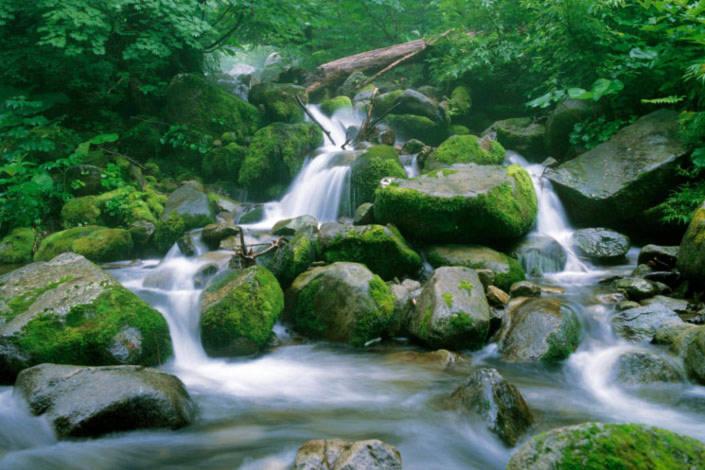 Vùng núi Shirakami còn có nhiều thác nước đẹp