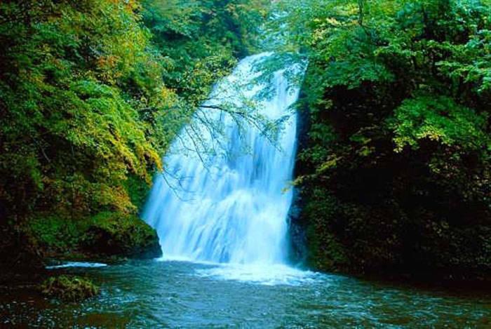 Không chỉ sở hữu thảm thực vật phong phú và hệ thống thác nước đa dạng, Shirakami còn có cảnh sắc tuyệt đẹp.