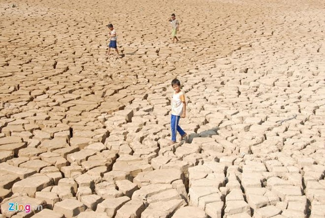 Tình trạng hạn hán tại Đồng bằng sông Cửu Long đang rất nghiêm trọng. (Ảnh: Tri Thức Trực Tuyến)
