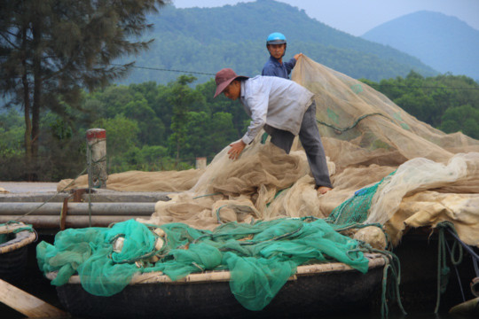 Ngư dân xã Lộc Vĩnh treo lưới sau khi phát hiện cá mặt đáy trôi dạt vào