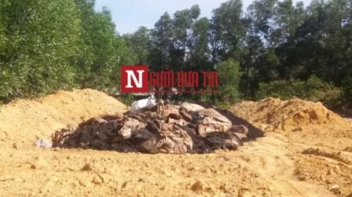 Chấn động: Formosa chôn chất thải ở trang trại của GĐ môi trường - Ảnh 1