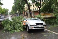Hà Nội sau bão