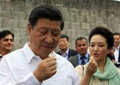 Trong giới quan trường Trung Quốc, lừa dối chính là thủ đoạn được sử dụng rất thường xuyên. Chủ tịch Tập Cận Bình cũng từng bị mắc lừa. (Ảnh: Internet)