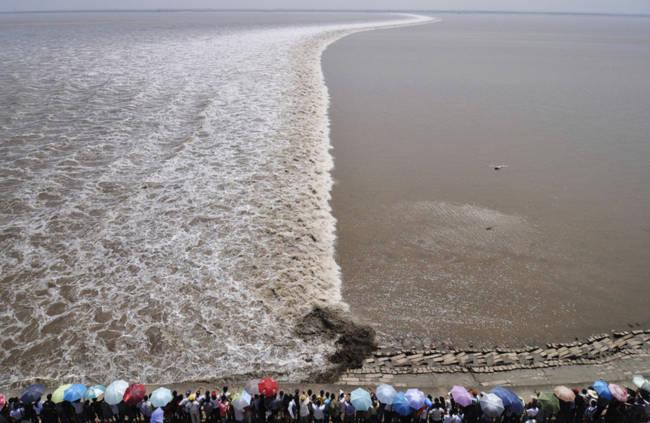 Chứng kiến thủy quái trên sông Tiền Đường, nhiều người không khỏi rùng mình trước sức mạnh của mẹ Thiên nhiên - Ảnh 2.