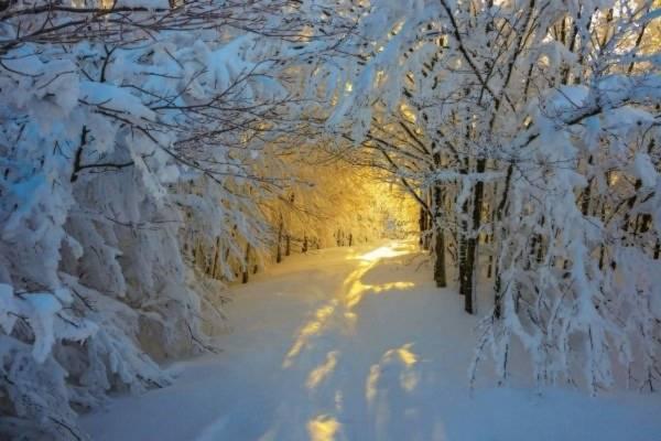 trên khắp thế giới, mùa đông,