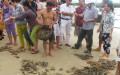 Tôm hùm nuôi bị chết tại xã Xuân Cảnh (TX Sông Cầu) – Ảnh: ANH NGỌC – Báo Phú Yên