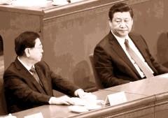 Trương Đức Giang và Tập Cận Bình. (Ảnh: Internet)