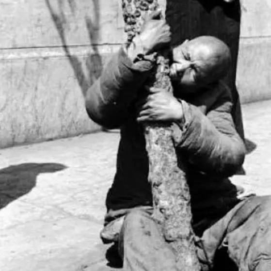 Đại nhảy vọt, nạn đói, Mao Trạch Đông, chết đói,