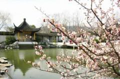 Hồ Yến Tước - Nam Kinh