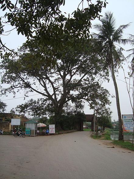 Cổng làng Mông Phụ xã Đường Lâm thị xã Sơn Tây Hà Nội. (Ảnh từ wikipedia.org)