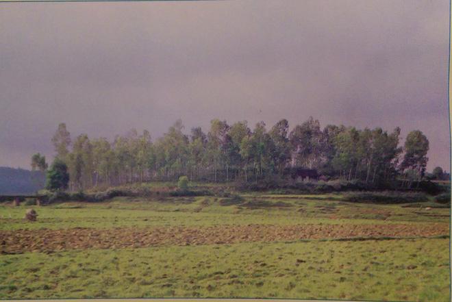 Động Cồn Đền nơi Mai Thúc Loan đi săn. Nguồn: Sách địa danh di tích lịch sử-văn hóa lễ hội vua Mai ở Nam Đàn