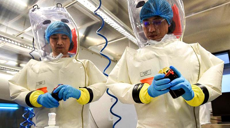 Các chuyên gia hàng đầu thế giới trong lĩnh vực vũ khí sinh học đã cho rằng virus Corona mới ở Vũ Hán không đến từ động vật hay tự nhiên, mà là từ một phòng thí nghiệm ở Vũ Hán. (Ảnh: Sở nghiên cứu virus Vũ Hán)