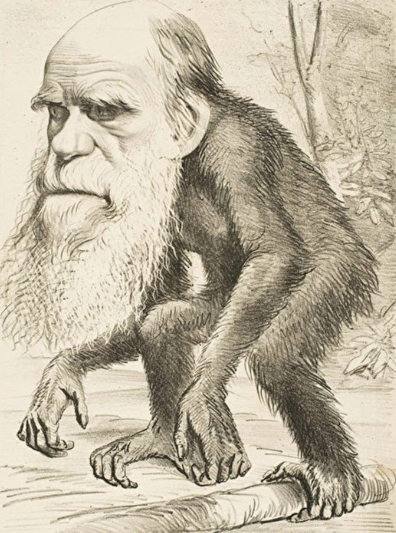 Hình: Biếm họa năm 1870 phản ánh sự phản đối của Cơ Đốc giáo đối với ý tưởng rằng con người và vượn có tổ tiên chung.
